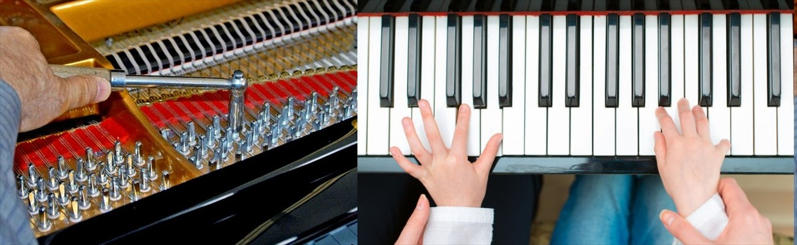 We can tune your piano right up to teach you to play...
